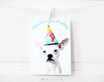 French Bulldog Heard it's Your Birthday Card - Frenchie Birthday Card - Dog Birthday Card - Birthday Greeting - Cute Birthday Card