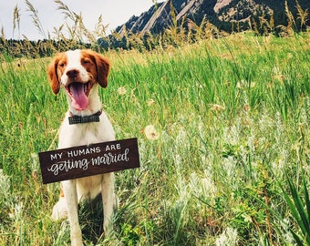 my humans are getting married sign / dog sign / ring bearer sign / wedding aisle sign / engagement announcement sign.