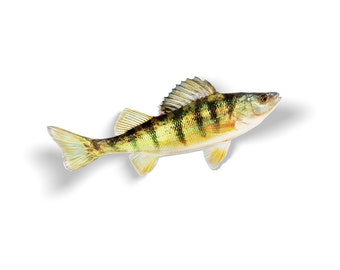 Yellow Perch Decal, Yellow Perch Sticker, Yellow Perch