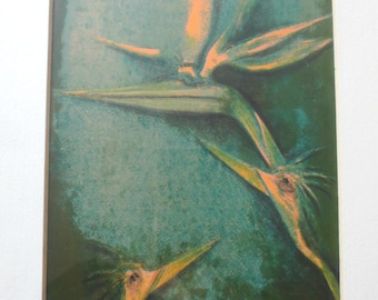 """Quirky Art Print, """"The Flower Bird"""" Touched Print, by M.C. Efira  Professionally Framed"""