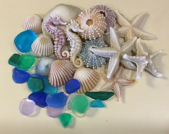 Seashell Soaps - Beachcomber Collection, Soap, Nautical, Beach Wedding, Wedding Favors, Beach Theme,Guest Soap, Starfish, Seaglass, Seahorse