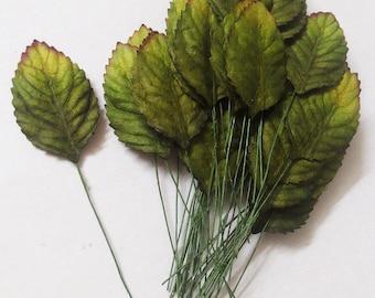 "100 Big Leaf  (Size 1.25""x2"") Mulberry Paper Craft Leaves, Paper Leaf, Green Leaf."