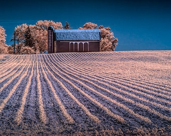 Rows in a Farm Field with Barn and Silo in Infrared in West Michigan No.1682 A Fine Art Agricultural Country Landscape Photograph