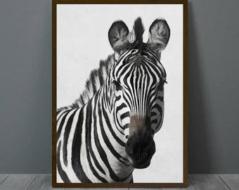 Zebra Print, Zebra Wall Decor, Zebra Poster, Zebra, Animal Print Wall Decor, Zebra Wall Art, Zebra Nursery Print