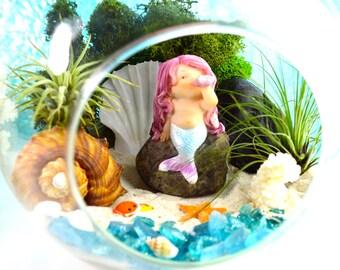"""Little Mermaid Beach Terrarium Kit ~ 7"""" Air Plant Terrarium Kit ~ Coastal Living Beach Decor ~ Mermaid with shell on a Rock ~ Shells ~ Gift"""