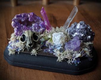 Mini Macabre Cat Skull Purple Crystal Caves Crystal Garden w/ Aura Agate Geode, Lepidolite, Amethyst, Quartz