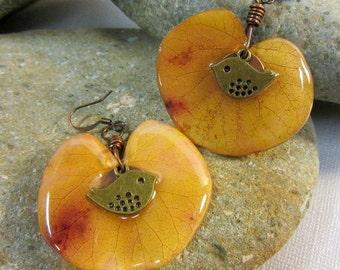 Real Western Redbud Leaf Earrings, Fall Leaf Earrings, Autumn Leaf Jewelry, Brass Birds Earrings, Resin Leaf Earrings, Orange Leaf Earrings