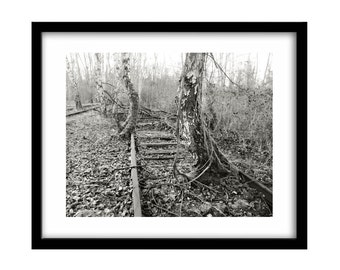 Abandoned Train Tracks, Black and White Photography, Nature Photography, Large Wall Art, Nature, Gift For Him, Railroad Photography