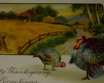 Turkeys and Wheat Field Antique Thanksgiving Postcard