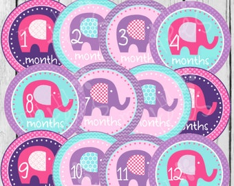MONTHLY IRON-ONS Decals or Monthly Stickers - 12 Monthly iron on heat transfer - Baby girl - Elephants - Pink, purple, turquoise (Style#A02)
