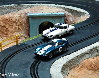 Slotcar Photograph, Still Life Photography, Race car photos, miniature scenic racetrack photo, Scalex