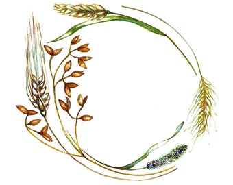 Grain Wreath - Oat, Millet, Rye, Wheat Print: Giclee Print, Harvest, Farming, Autumn, Fall