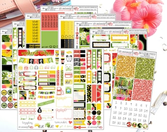 Tropical Watermelon Collection for Erin Condren Life Planner/Planners