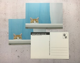 Cats postcards set of 3-Loui in the bathtub
