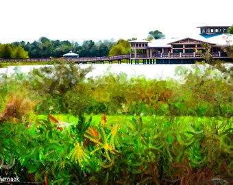 Photograph and digital manipulation  from Green Cay Wetlands in Boynton Beach, FL: 5x7 digital matted image