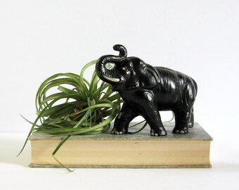 Vintage Black Elephant Figurine - 50s Sylvac Ware Ceramic Figurine - Elephant Tusks - African Safari Decor - Good Luck Symbol - Zoo Animal