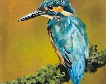 Feathered Jewel