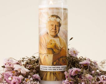Saint Attenborough Prayer Candle