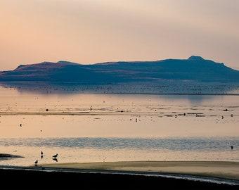 On the Shore of Antelope Island, Utah