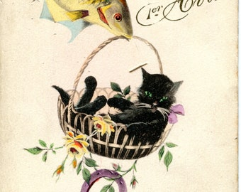Fish, black cat and lucky charm