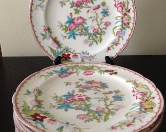 & English china plates | Etsy