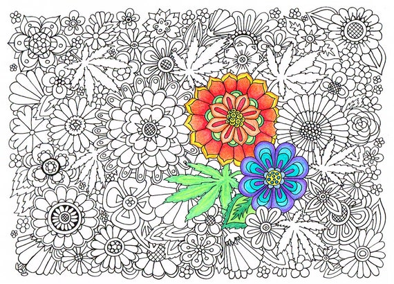 flower weeds coloring pages - photo#21