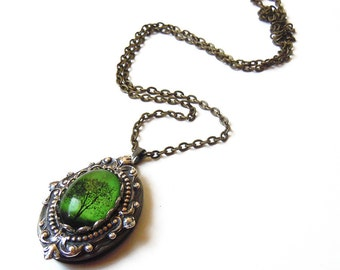 Emerald Bewitched - Locket--- Christmas gift----gift for her.silver locket.photo locket.Antique Locket  tree necklace tree locket