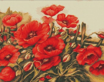 Poppies of field SB490 - Cross Stitch Kit by Luca-s