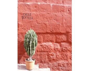 """Calle Sevilla. Original Fine Art Photography per decorare la casa,18x24cm (7,08x9,44"""")"""