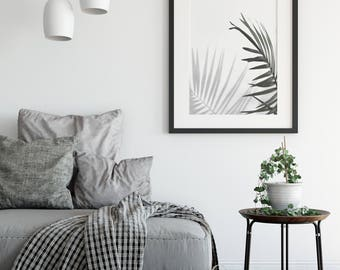 Under the Palm   Photographic Wall Art   Modern Nature Photo Wall Art Print or Poster - Scandi Bohemian Style. FREE Shipping