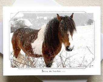 230...  Cheyenne in the snow...