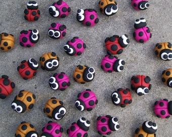 Mini - Ladybeatles, Ladybirds and Ladybugs!