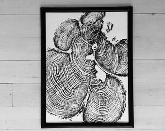 Tree Ring Art, Grand Canyon, Tree ring print, tree print, woodcut art, forest art, Christmas Tree, Christmas Art, art gift, tree stump