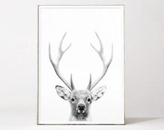 Deer head, deer print, deer antlers, deer wall art, tete de cerf, deer wall decor, deer poster, deer antler print, black and white deer art