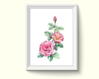 Rose Flower Watercolor Painting Poster Art Print P358
