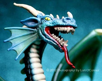 Dragon - Photograph - Various Sizes