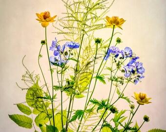 Flower Photography, Yellow Blue Green Flower Photo, Fine Art Print, High Key, Pastels, Botanical Print, Floral Bouquet, Summer, Gift for Her