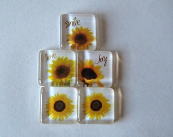 Fun Sunflowers Square Glass Magnets Set of 5