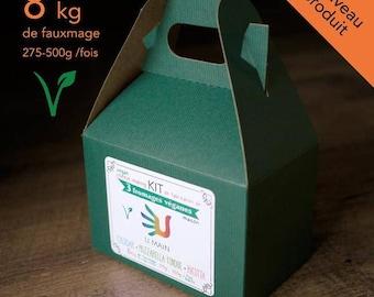 3 vegan cheeses KIT 3 vegan cheeses. Cheese Making KIT cheese House. U hand kits - dairy free - no additives