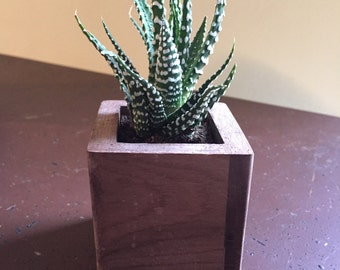 Modern Succulent Planter, Small Hand Crafted Wood Pot