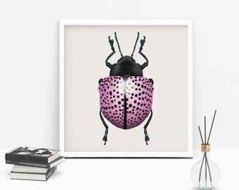 Ladybug wall art, bug Wall art, ladybug print art, ladybug print, insect wall art, ladybug illustration, pink ladybug print, animal poster