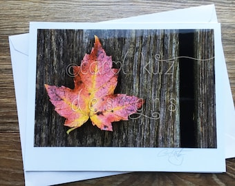 Fall Leaf Greeting Card with Envelope / Photograph Shot and Processed by Carol Kutz / Blank Greeting Card / All Occasion / Thank You Card