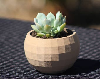 Low-Poly 3D Printed Planter FREE Water Dish For Succulent and Cactus