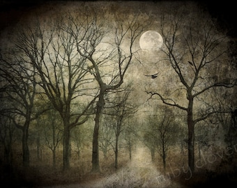 FOREST MOON, Blackbirds, Digital Collage, Raven Photo, Halloween Decor, Goth, Blue Night Sky, Pagan Art, SAMHAIN, Full Moon, Twilight, Trees