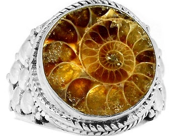 Fossil Ammonite Sterling Silver Ring  s.7