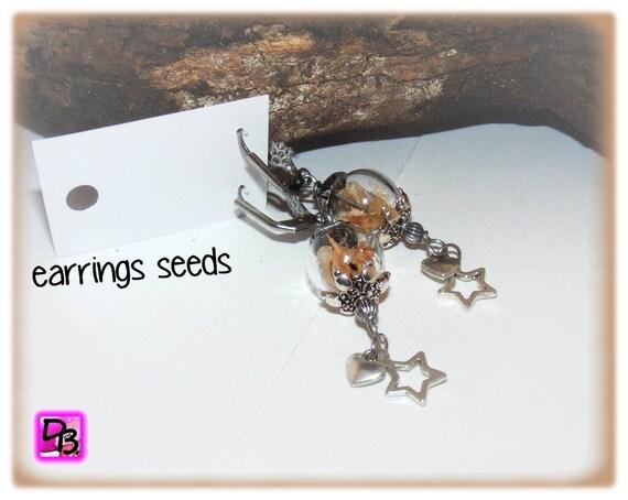 Boucles d'oreilles [Earrings seeds]