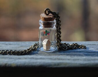 UP house in mini bottle, charm necklace