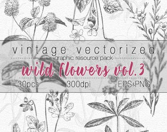 Wild Flowers Clipart Vol3 Botanical Illustration Digital Art Graphic Design Resource Vintage Printable Flower Image Clip Art Vector EPS PNG