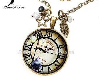 Necklace (dream) dark bronze OWL clock cat glass cabochon)