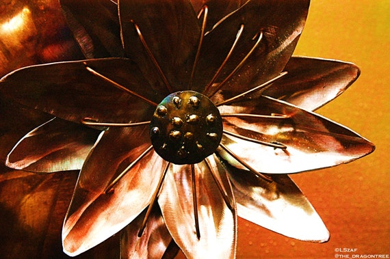 Water Lily, Handmade Metal Wall Piece